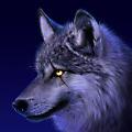 SpiritWolfe avatar